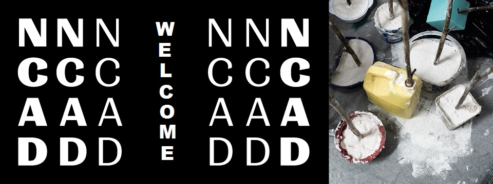 National College of Art and Design - Welcome banner